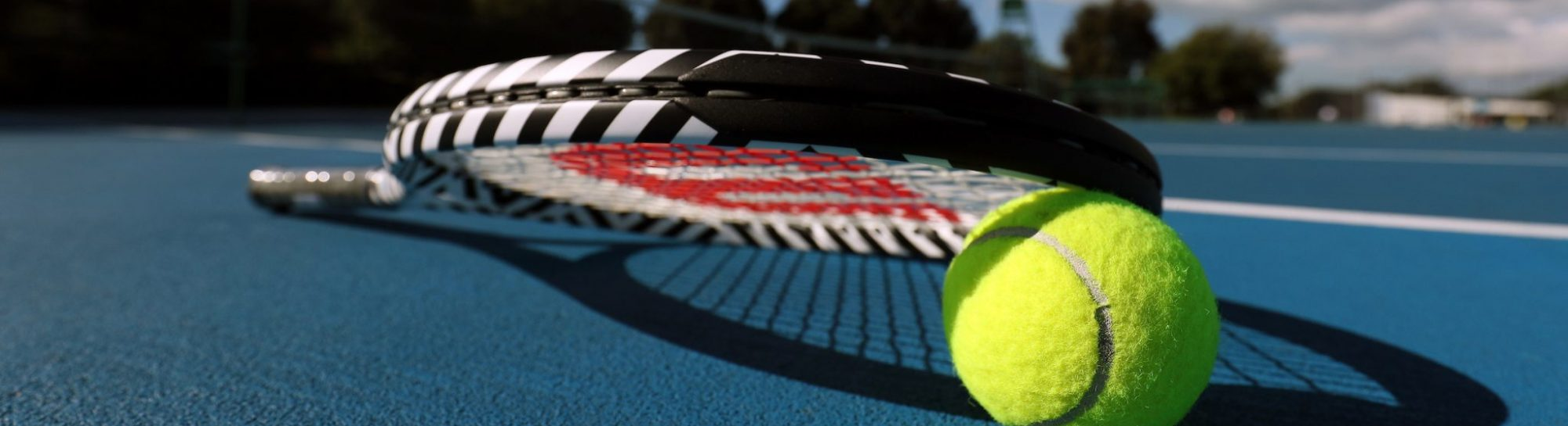 Adult Coaching Tennis Auckland